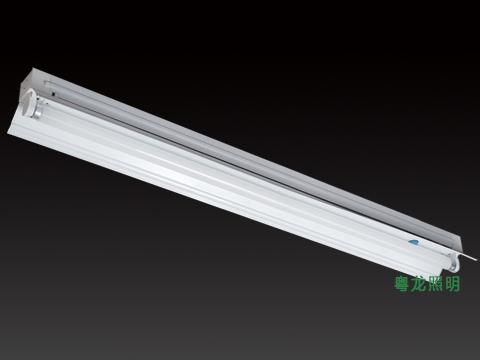 1*20 欧式T8带罩灯管支架